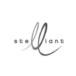 logo de la société stelliant